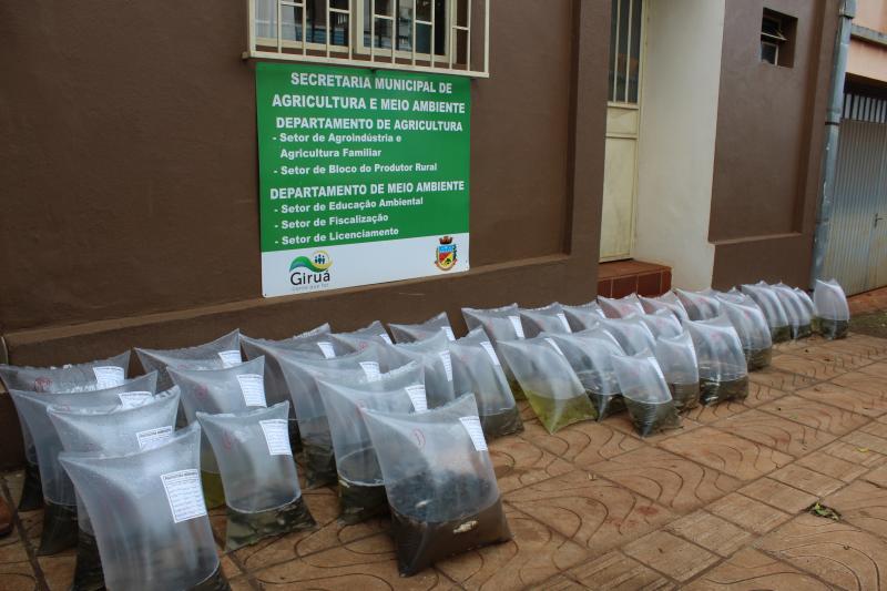 Encomendas de alevinos podem ser feitas até dia 10 de janeiro
